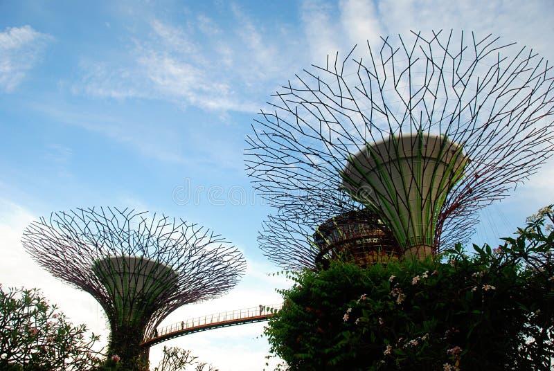Tuinen door de Baai, Singapore royalty-vrije stock afbeelding