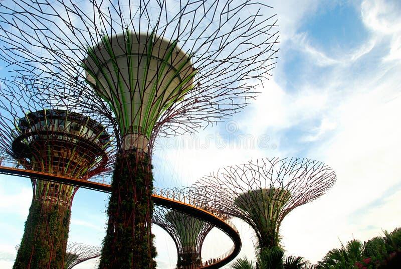 Tuinen door de Baai, Singapore stock foto