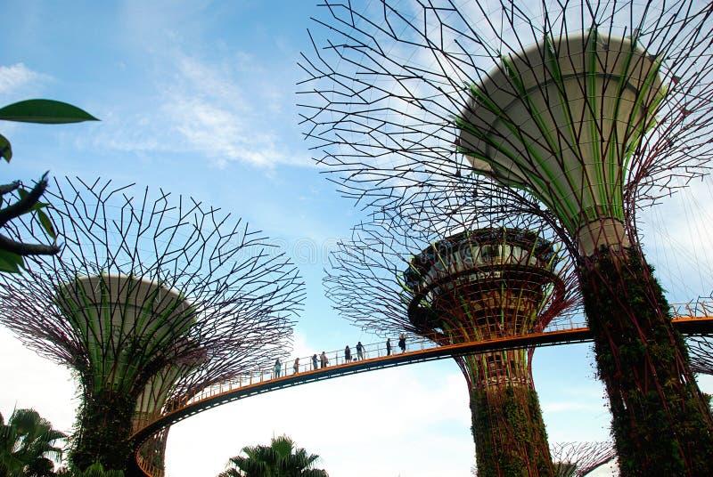 Tuinen door de Baai, Singapore stock foto's