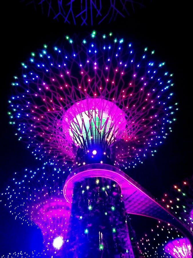 Tuinen door de Baai, Singapore royalty-vrije stock foto's