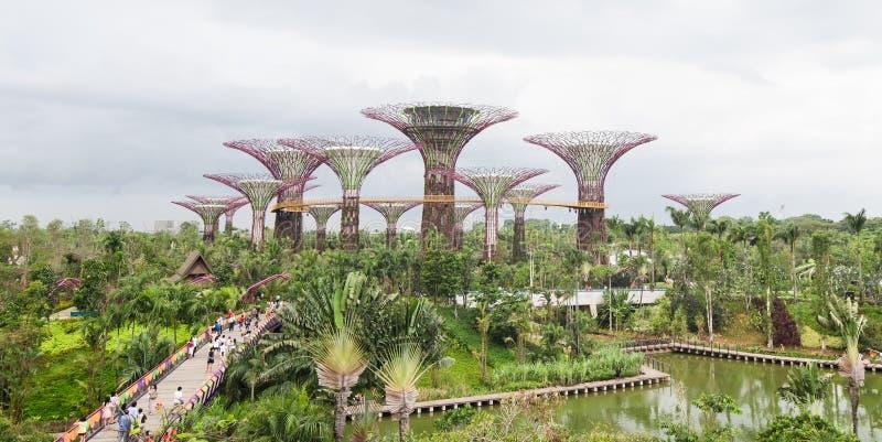 Tuinen door de Baai, Singapore royalty-vrije stock fotografie
