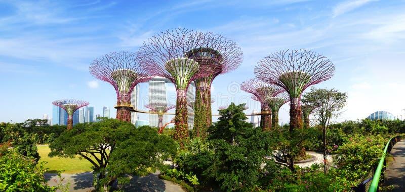 Tuinen door de Baai. Singapore royalty-vrije stock afbeeldingen