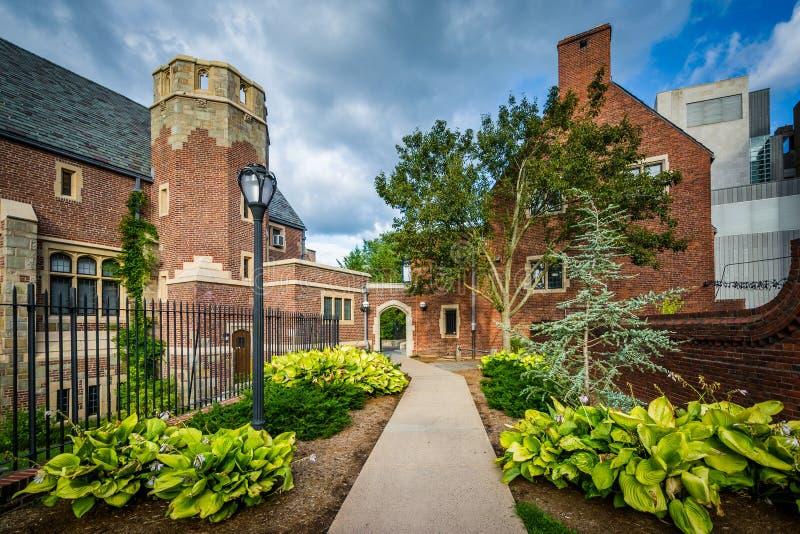 Tuinen langs gang en gebouwen in Yale University, in Nieuw H royalty-vrije stock afbeeldingen