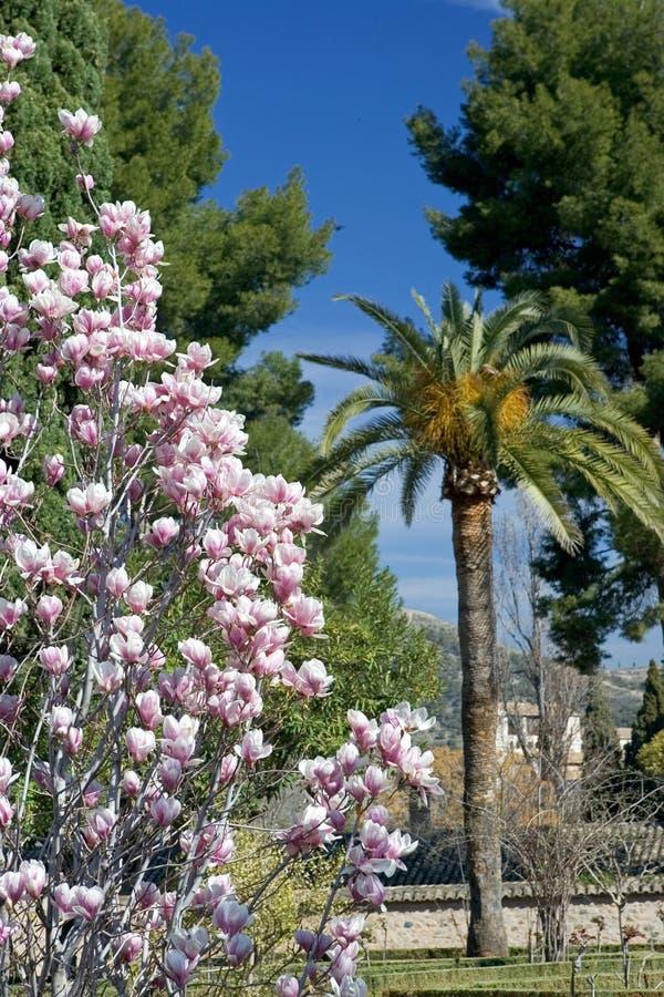 Tuinen van Alhambra Paleis in Granada royalty-vrije stock foto