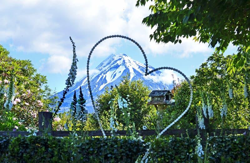 Tuinhuwelijk het plaatsen & reuze bloemenhartvoorzijde van sneeuw afgedekte berg royalty-vrije stock foto