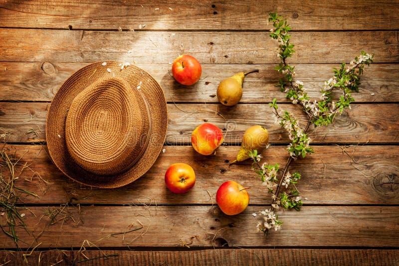 Tuinierend - hoed, appelen, peren, en bloeiende boomtak op hout stock afbeelding