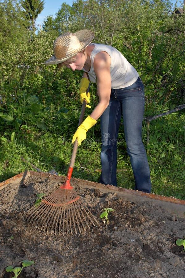 Tuinierende vrouw stock afbeelding