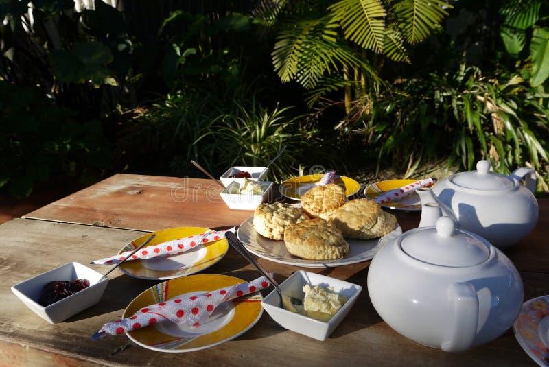 Tuinkoffie: informele Devonshire-thee stock afbeeldingen