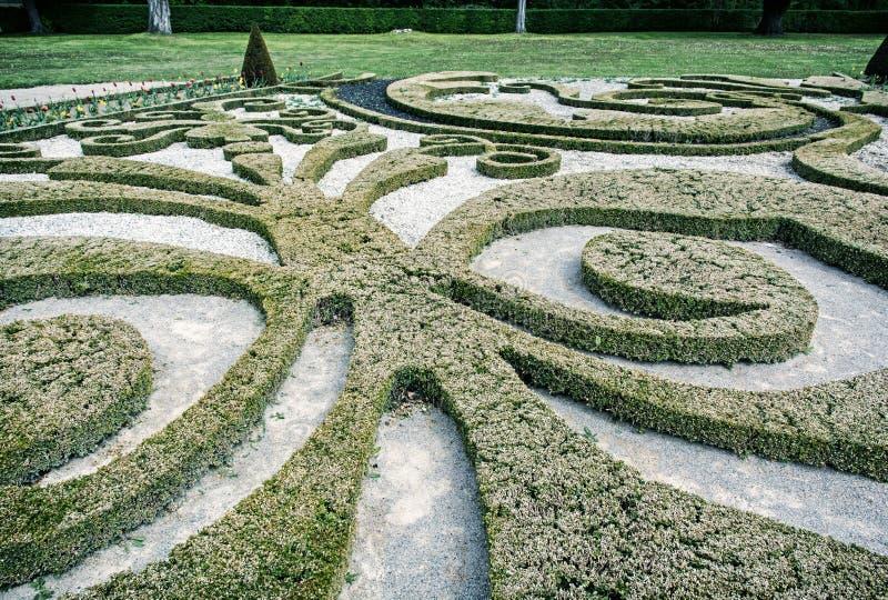 Tuinlabyrint in Schloss Niederweiden in Oostenrijk stock foto