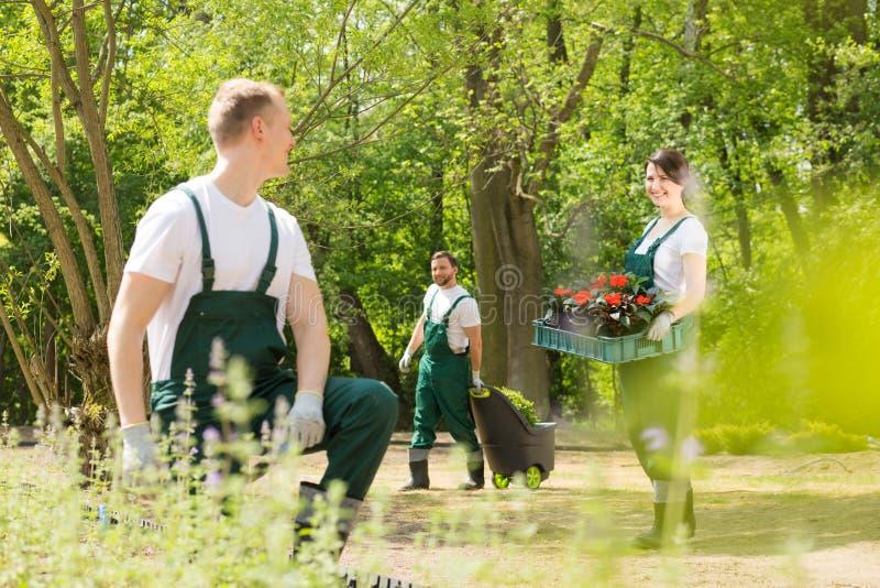 Tuinlieden die bloemen in park planten royalty-vrije stock afbeeldingen