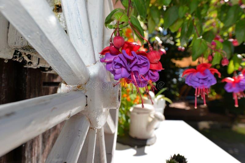 Tuinplattelandshuisje royalty-vrije stock afbeeldingen