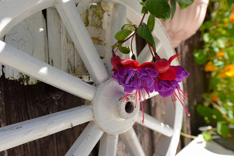 Tuinplattelandshuisje stock foto