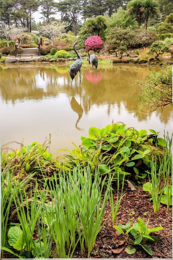 Tuinportret stock afbeeldingen