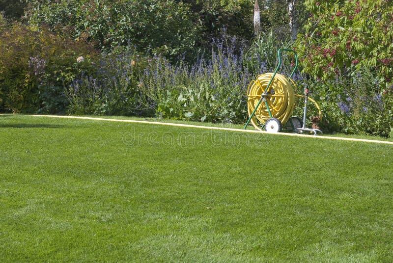Tuinslang op groen gazon royalty-vrije stock afbeeldingen