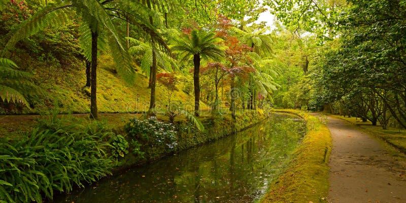 Tuinsteeg langs de waterstroom royalty-vrije stock fotografie