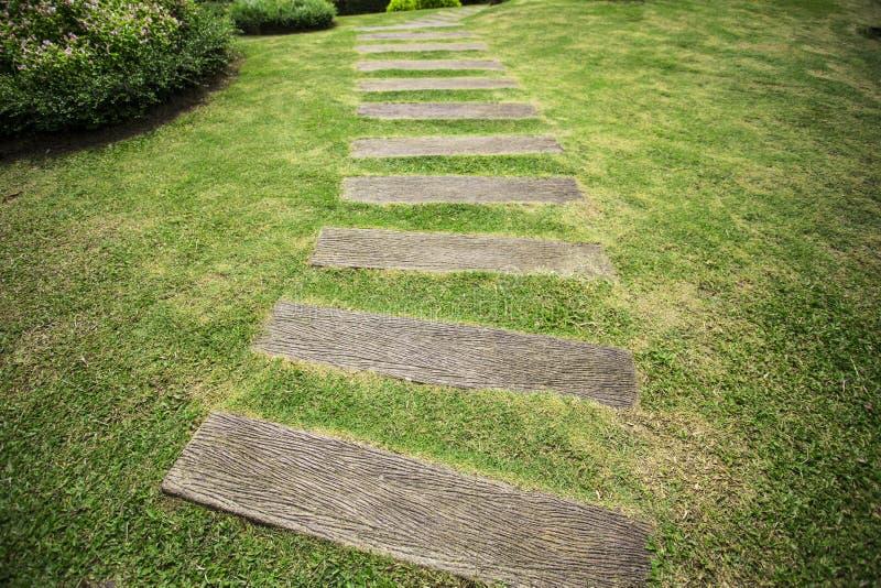Tuinweg met gras het groeien tussen houten stock fotografie