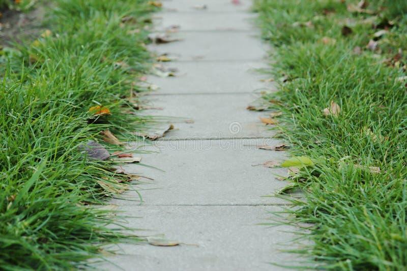 Tuinweg van het bedekken plakken stock afbeelding