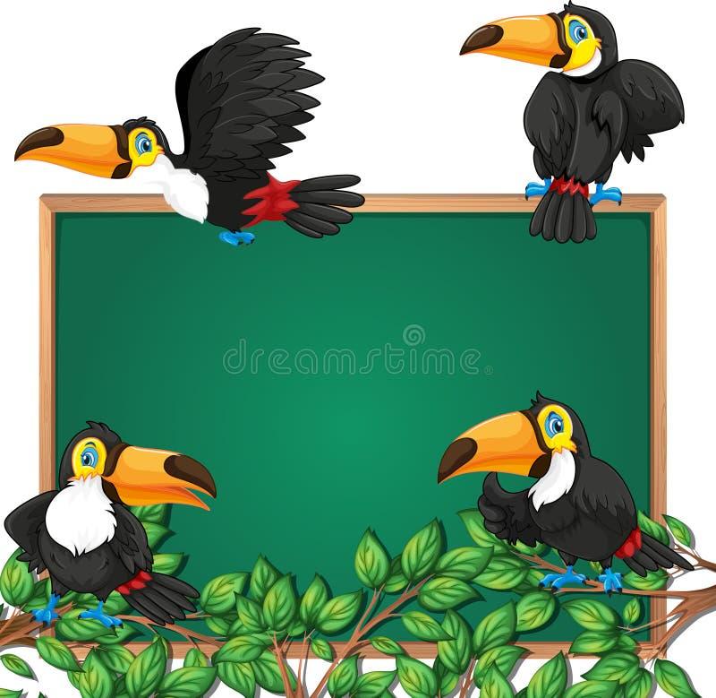 Tukan auf Tafelrahmen lizenzfreie abbildung