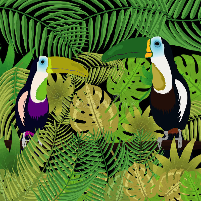 tukan dżungli fotografia stock