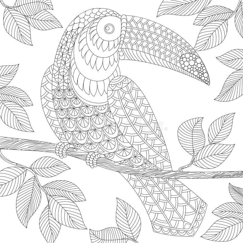 tukan Dorosła antistress kolorystyki strona royalty ilustracja