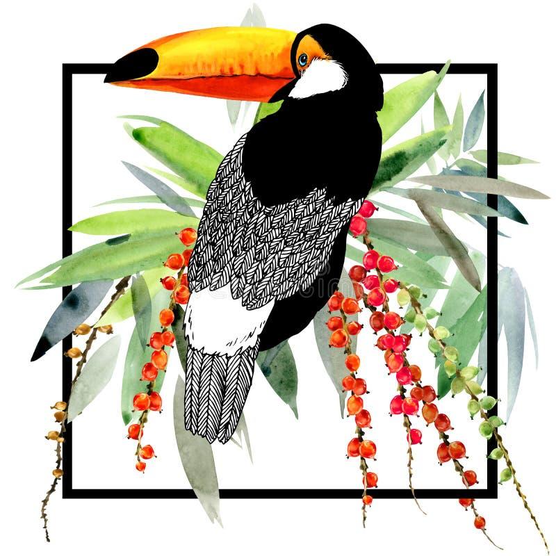 tukan Egzotyczny natury tło tropikalne rośliny royalty ilustracja