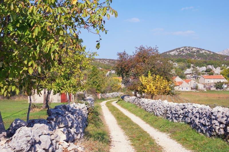 秋天乡下公路 波黑,塞族共和国 库存照片