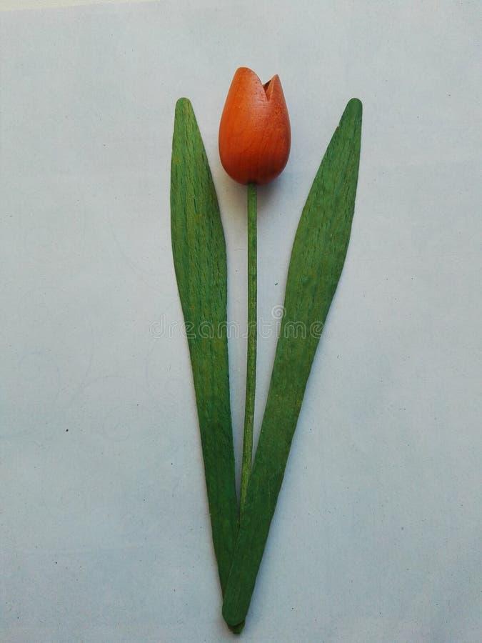 Tulipán de madera fotos de archivo