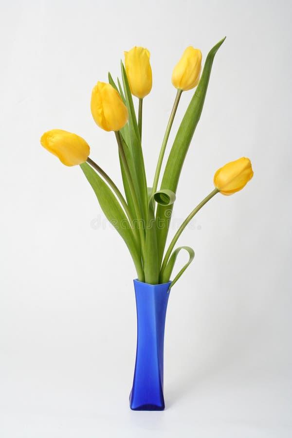 Tulipán del ramo imágenes de archivo libres de regalías