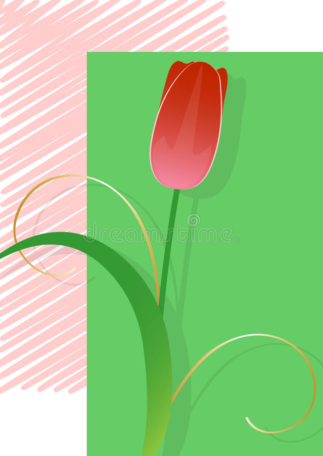 Tulipán rojo, postal fotografía de archivo