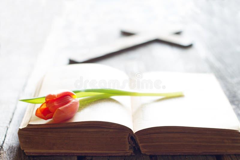 Tulipán y biblia de la primavera de Pascua con el fondo abstracto cruzado imagen de archivo