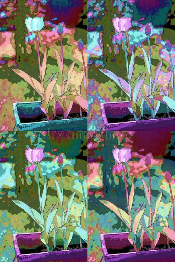 Tulip Abstracted royalty-vrije illustratie