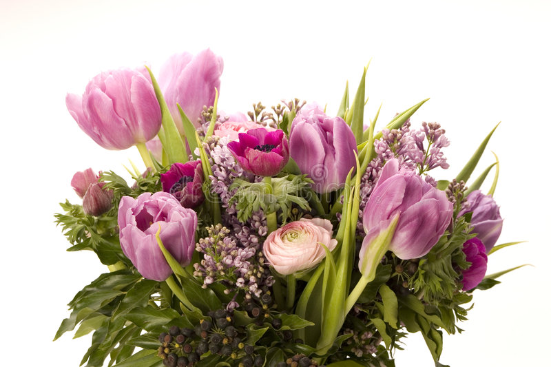 Download Tulip, Anemone, Lilac & Berries Royalty Free Stock Photography - Image: 4158687