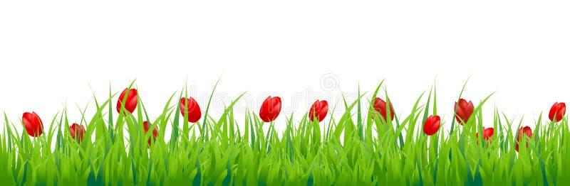 Tulip Border illustration de vecteur