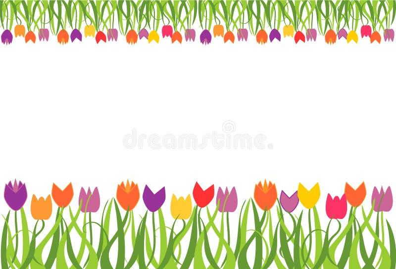 Tulip border frame stock vector. Illustration of drawing ... Tulips Clip Art Border