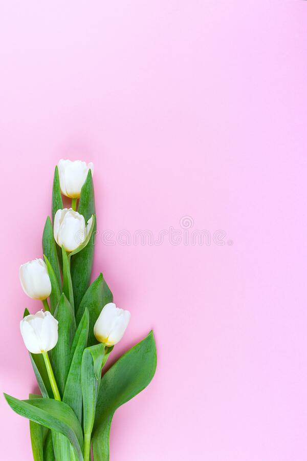Tulip bouquet.Top view.Vertical royalty free stock images