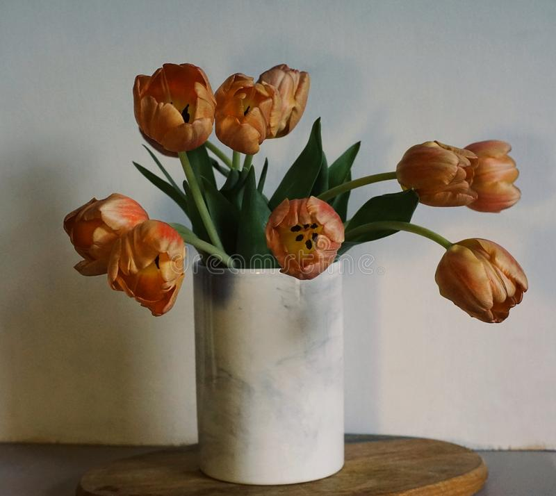 tulips flowers bouquet close-up white wall wood table royalty free stock photo