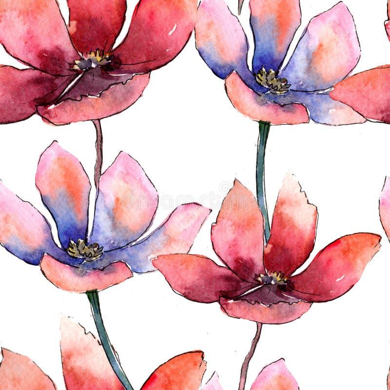 Tulip colorido Flor botânica floral Teste padrão sem emenda do fundo Textura da cópia do papel de parede da tela ilustração royalty free