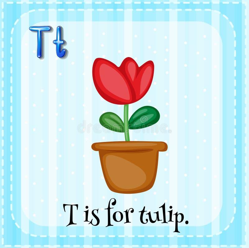Tulip. Flashcard letter T is tulip royalty free illustration