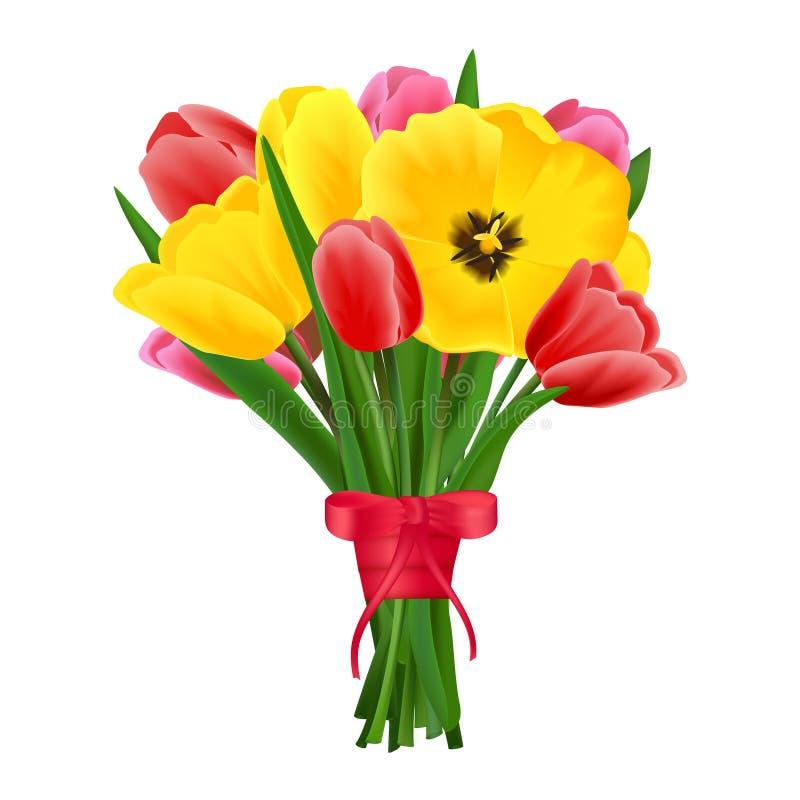 Tulip flower bouquet. Multicolored beautiful blossoming blooming tulip flower bouquet realistic vector illustration