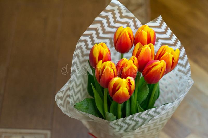 Tulip flowers covered with white paper standing on wooden floor. Best gift for holiday. Concept of love, tenderness, copy space, stock photography
