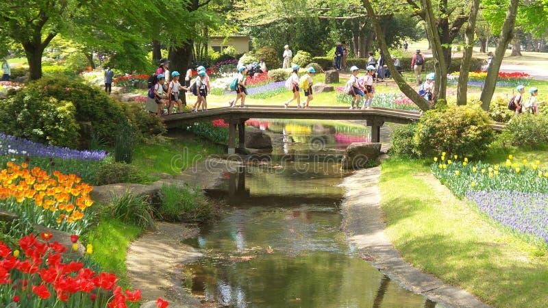 Tulip Flowers Fantasy Garden met Kleine Brug royalty-vrije stock afbeeldingen