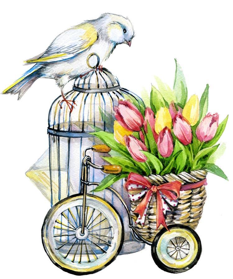 Tulip Flowers, zitronengelber Vogel und dekorativer Birdcage watercolor vektor abbildung