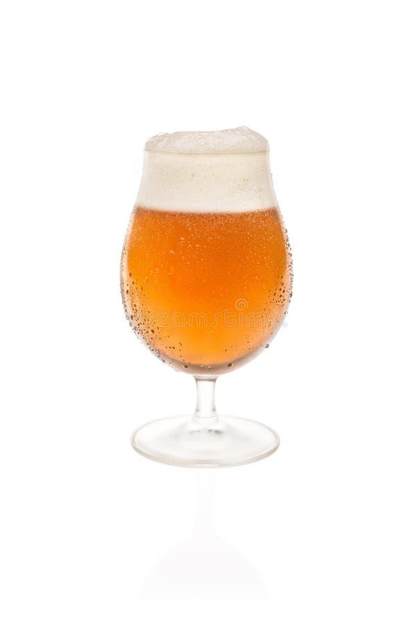 Tulip Glass With Belgium Beer royaltyfri foto