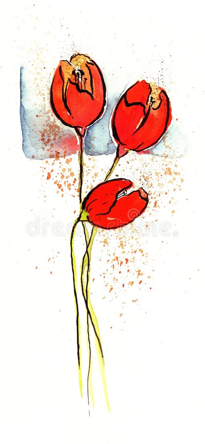Download Tulip illustration stock illustration. Image of pencil - 5950054