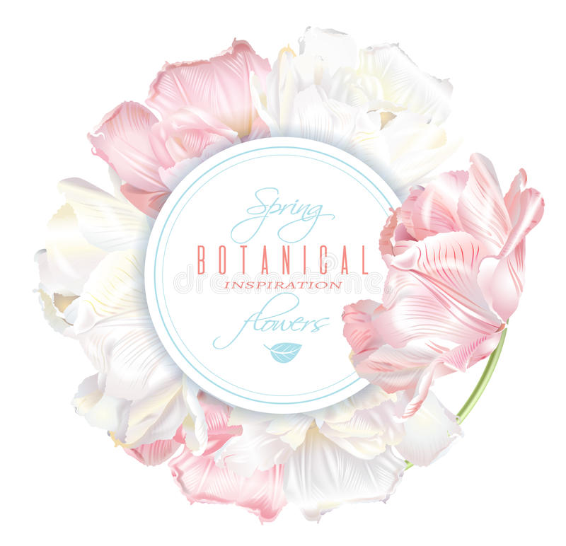 Tulip round banner. Vector round banner with white and pink tulip flowers. Spring tender design for natural cosmetics, perfume, florist shop. Can be used as vector illustration