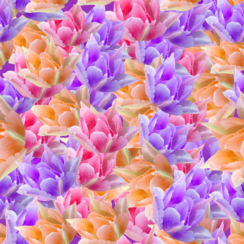 Tulip. Seamless pattern texture of flowers. Floral background, p stock illustration