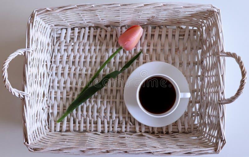 Tulipa cor-de-rosa em uma cesta de vime com xícara de café HOME Apenas chovido sobre Fundo da mola Cartão para o Valentim fotos de stock royalty free