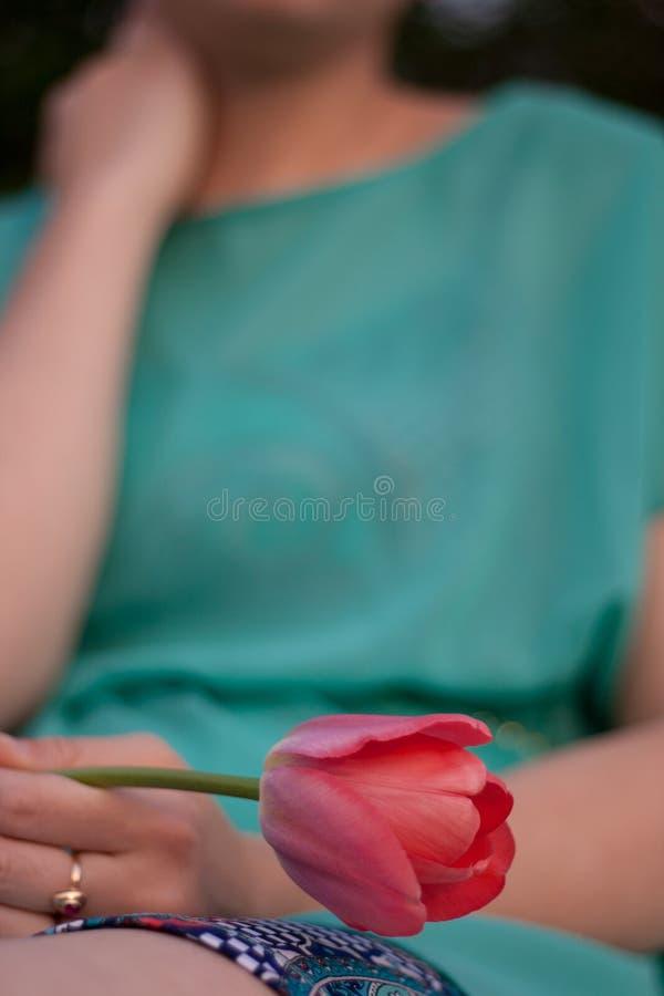 Tulipa cor-de-rosa na mão esquerda da mulher Moça de assento no vestido verde que guarda uma flor Fêmea que veste a saia curto e  imagens de stock royalty free