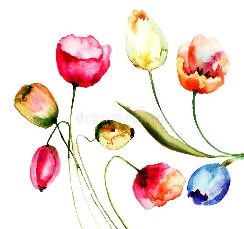 Tulipanów kwiaty royalty ilustracja