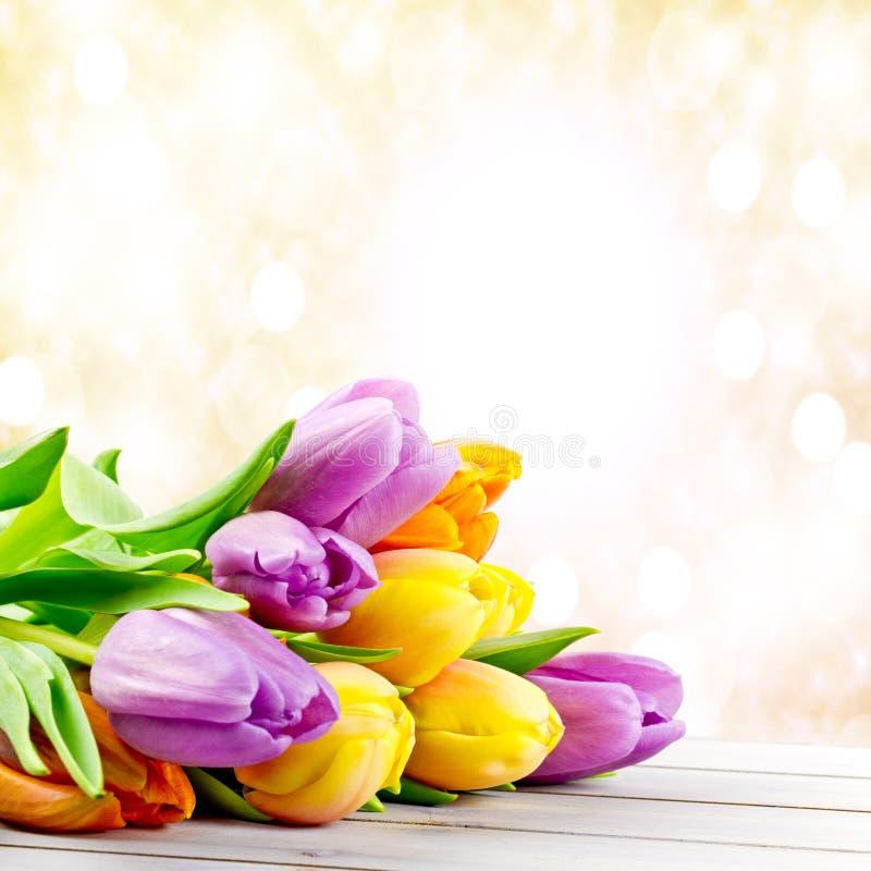Download Tulipanes imagen de archivo. Imagen de azul, madres, colorido - 41910147